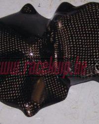 Carbon Motordeksel bescherming Kawasaki zx10r 2004 2005